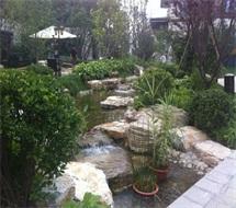 生态园景观